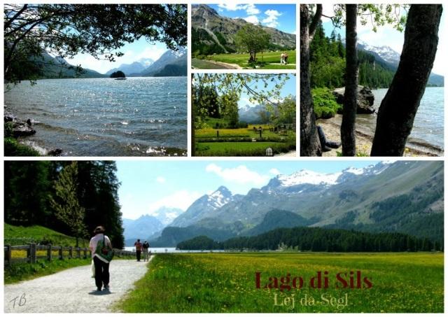 Sils-Svizzera-aria-photo-by-Tiziana-Bergantin-B503