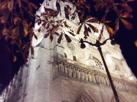 Paris-notre-dame-nuit-5-photo-by-Tiziana-Bergantin-A805